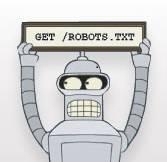 Настройка robots txt wordpress