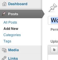 Get terms wordpress