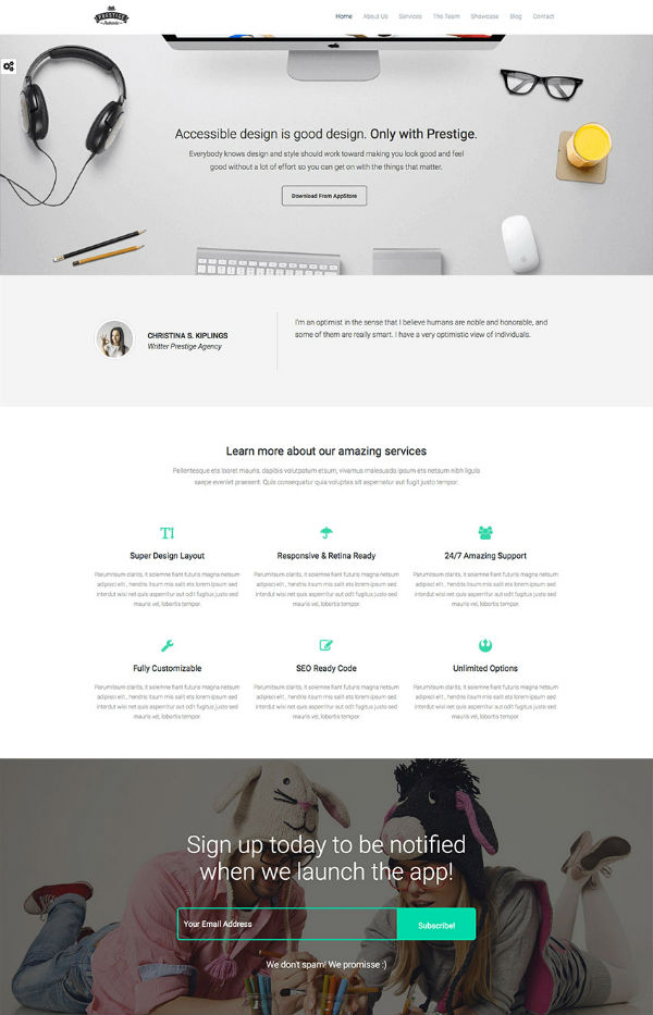 wordpress-landing-page-themes11